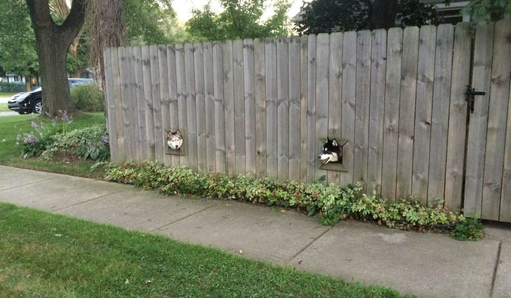 Дырка в заборе